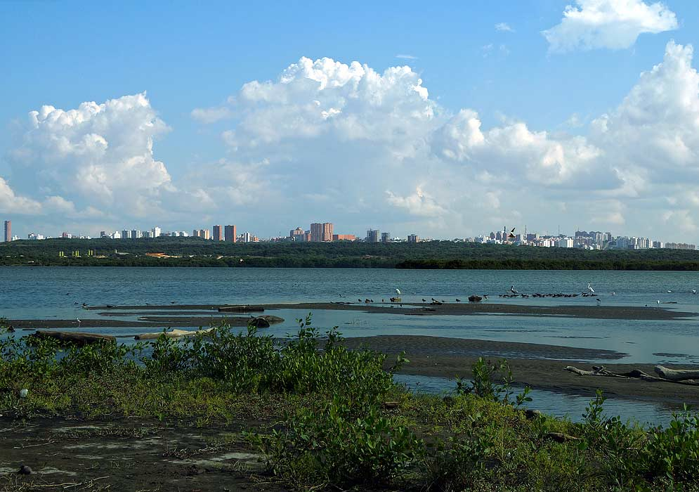 Barranquilla from the sea