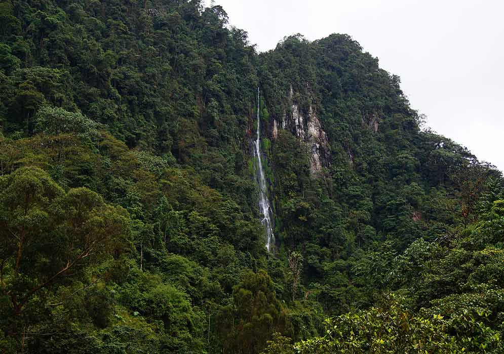 Waterfall in Valle de Cocora