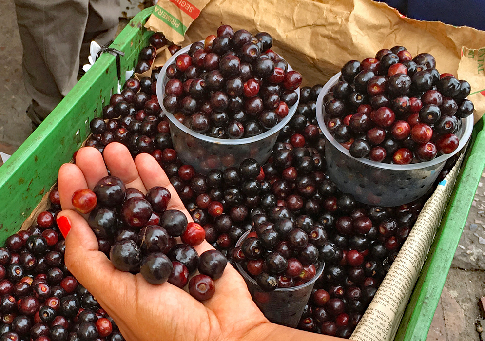 A plastic container with dark cherries and plastic cups full of cherries for sale