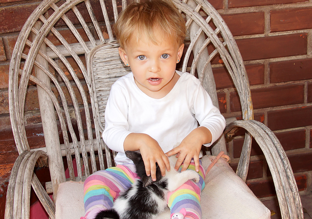 Gorgeous Colombian American toddler holding on to her black and white kitten